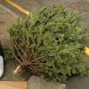 Holiday Decorations and Gift Wrapping Disposal